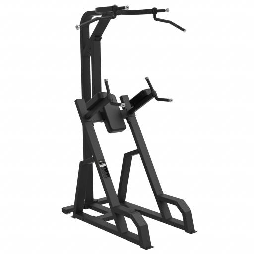 Primal Strength Commercial Chin-Up Dip Frame